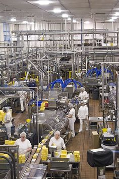 Tillamook Cheese factory floor by Adam R. Paul