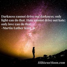 Darkness cannot drive out darkness; only light can do that. Hate cannot drive out hate; only love can do that. ~ Martin Luther King, Jr.
