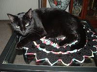 My cat on one of my crocheted doilies.