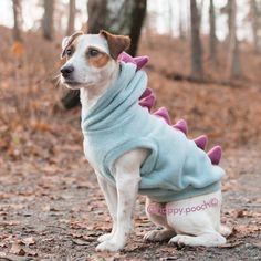 Dinosaur Dog Hoodie Dino dog clothes Warm Dog by HappyPooch