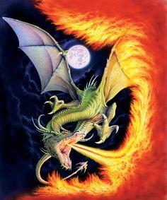 Dragon Fire from The Dragon Chronicles by Jan Patrik Kransy