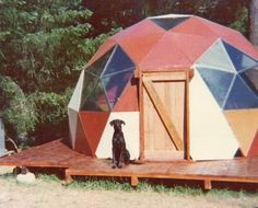 Dog and geodesic dome / The Green Life <3
