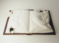 Sleeping in a book