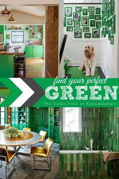 Green Home Inspiration via Remodelaholic.com #green #color #inspiration