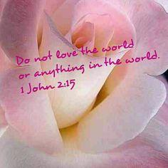 Do not love the world 1 John 2:15