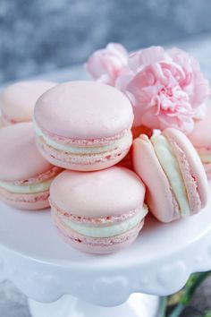 Cute Marshmallows, Vanilla Macarons, French Macaroons, Macaroon Recipes, Recipes From Heaven, Yummy Cookies, Biscuit Cake, Cake Pops, Food And Drink