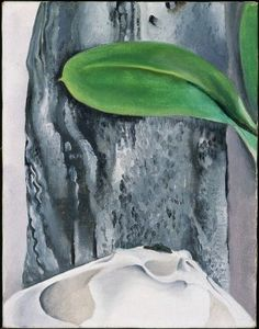 "Georgia O'Keeffe / ""Shell and Old Shingle No. 1."" / 1926 / Museum of Fine Arts, Boston"