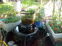 Aquaponic Pond & Garden made from all recycled and free-cylced stuff!