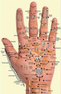 mapa reflexológico completo das mãos...