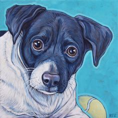 Dunkin the Mixed Breed Rescue Dog by Bethany.