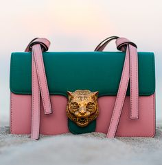 Gucci @lisalundranch                                                                                                                                                      More