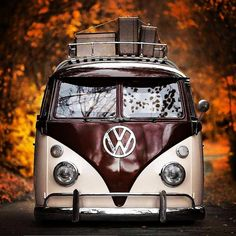 Mid 1960s Split Window Volkswagen Bus lowered, with suitcases in the luggage rack. Autumn leaves. I think it's a 1965, but it could be 1962, 1963, 1964, 1966, or 1967. The turn signals were different before and after that. VW van, Hippy van, chrome bumper chrome emblem, flower children road trip. Type 2, type ii Splitty Transporter panel deluxe Old Vintage