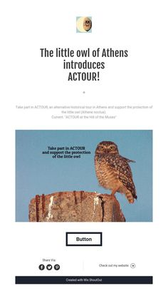 """The little owl of Athens"" introduces ACTOUR!"