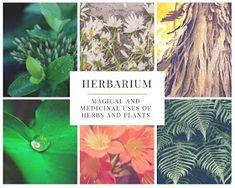 Herbarium: Magical and Medicinal Uses of Herbs