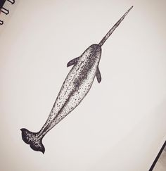 Narwhal tattoo sketch