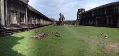 My trip to Cambodia