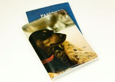 Dachshund Passport Cover - Recycled Paper Passport Cover with black short hair dachshund. $12.00, via Etsy.