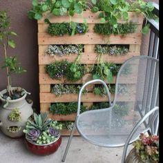 Shipping pellet garden