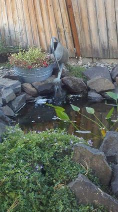 Water feature in garden pond