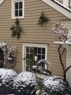 Pine snowflakes capture the beauty of the season.  @Terra Nelson for these clever snowflakes.  #snow #holidaydecor