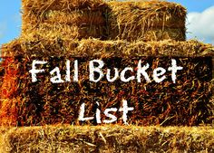 You'll Thank Me One Day: Fall Bucket List 2012