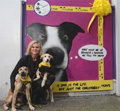 To make the nation think twice about purchasing puppies at Christmas, Dogs Trust launched 'A dog is for Life, not just for Christmas' street art campaign. Dog Charities, Dogs Trust, Christmas Presents, Street Art, Campaign, Product Launch, Puppies, Blog, Life