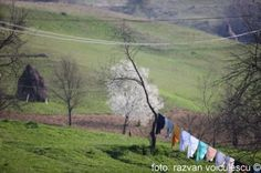 Village (via blog.razvan-voiculescu.ro) First Novel, Novels, World, Blog, Painting, Art, Art Background, Painting Art, Kunst