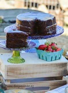 The Farmstead Party and Chocolate Salted Caramel Cake | The Organic Kitchen Blog and Tutorials