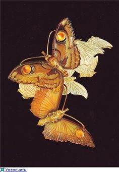 René Lalique. 1900 Blonde horn and enamel 'butterfly' stomacher. 4-5 in high