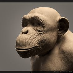 Cg Art, Chimpanzee, Sculpture Clay, Lee Jeffries, Visual Effects, Zbrush, Cute Pictures, Cartoon, Monkeys
