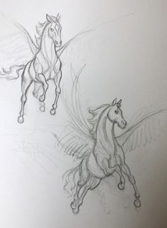 Sketches of Star from the Guardian herd Pencil Drawings Of Animals, Creature Drawings, Horse Drawings, Animal Sketches, Art Drawings Sketches, Drawing Art, Horse Tattoo Design, Horse Sketch, Dragon Sketch