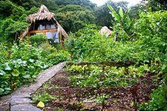 mystical yoga farm Mystic, Cabin, Yoga, Magical Gardens, House Styles, Dreams, Google Search, Home Decor, Decoration Home