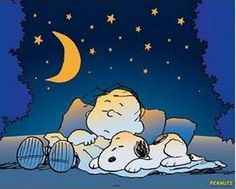 I love Snoopy. Charlie Brown and the gang too. Snoopy is my favorite. The Incensewoman Peanuts Gang, Peanuts Cartoon, Charlie Brown And Snoopy, Peanuts Characters, Cartoon Characters, Snoopy Quotes, Snoopy And Woodstock, Stars And Moon, Sweet Dreams
