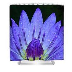 Very Blue Shower Curtain by Judy Whitton
