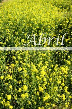 Primavera en abril.