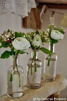 Bottles + flowers