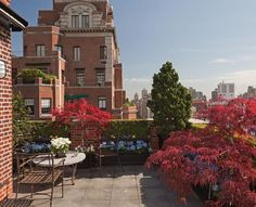 Noho penthouse roof garden new york blesso properties for 18 jolimont terrace east melbourne
