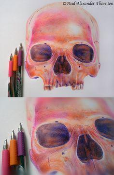 Ballpoint pen drawings. by Paul Alexander Thornton, via Behance