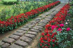 This idea basically combines a brick or stone walking path with an expertly curated flower bed that runs alongside. The flowers add a whole host of attraction to the place, while helping to frame the walking path. This is a project that takes a lot of time but not much money to achieve.