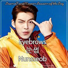 눈썹 eyebrows