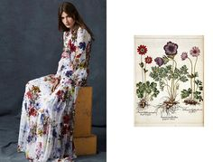 The Dress: Erdem Pre-Fall 2016 The Flower: Anemone