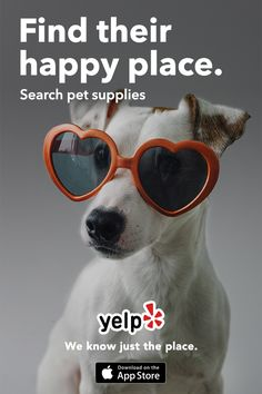 Whether you're looking for a pet trainer, vet, or whatever else your furry one needs, Yelp has tons of great suggestions that are reviewed by millions of users. Get the App and start searching.