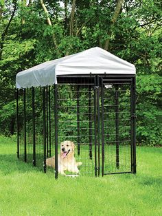 6'H x 4'W x8'D Black Powder Coated Chain Link Kennel at Menards
