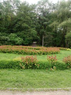 Park in Prokocim Nowy.