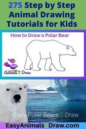 Learn how to draw an amazing Polar Bear with this easy and inspirational step-by-step drawing tutorial for kids of all ages! Start by drawing the head of the Polar Bear. Draw a curved line in graphite pencil. N Animals, Easy Animals, Draw Animals, Teach Kids To Draw, Learn To Draw, Drawing Tutorials For Kids, Drawing For Kids, Polar Bears For Kids, Polar Bear Drawing