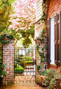 Courtyard Garden in Springtime Charleston SC Photo by Doug Hickok hue and eye photography Also my featured artist of the day is Charleston Gardens, Charleston Sc, Dream Garden, Home And Garden, Garden Gates And Fencing, Fences, Landscape Design, Garden Design, Courtyard Landscaping