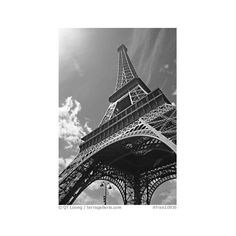 black and white pictures - Яндекс.Картинки ❤ liked on Polyvore