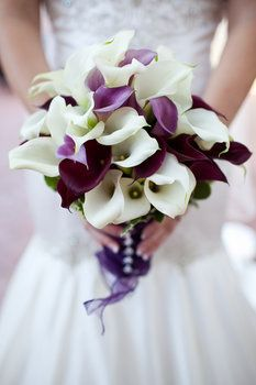 Purple Wedding Flowers Lyn's -another fave for bride I like the fullness of this one-purple and white calla lily bride bouquet. Purple Wedding Bouquets, Bride Bouquets, Wedding Colors, Bridesmaid Bouquet, Purple Calla Lilies, Calla Lily Bouquet, Lilies Flowers, Lavender Flowers, Deco Floral