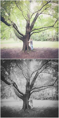 Photography & Design By Lauren- an on location photographer specializing in Weddings, Couples, High School Seniors, Families and Models based in Indiana 502.230.1907   A summer engagement session at Bernheim Forest Clermont, KY   Fields, engagement session, couples poses, tree , forestry