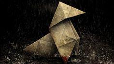 Pajarita bajo la lluvia